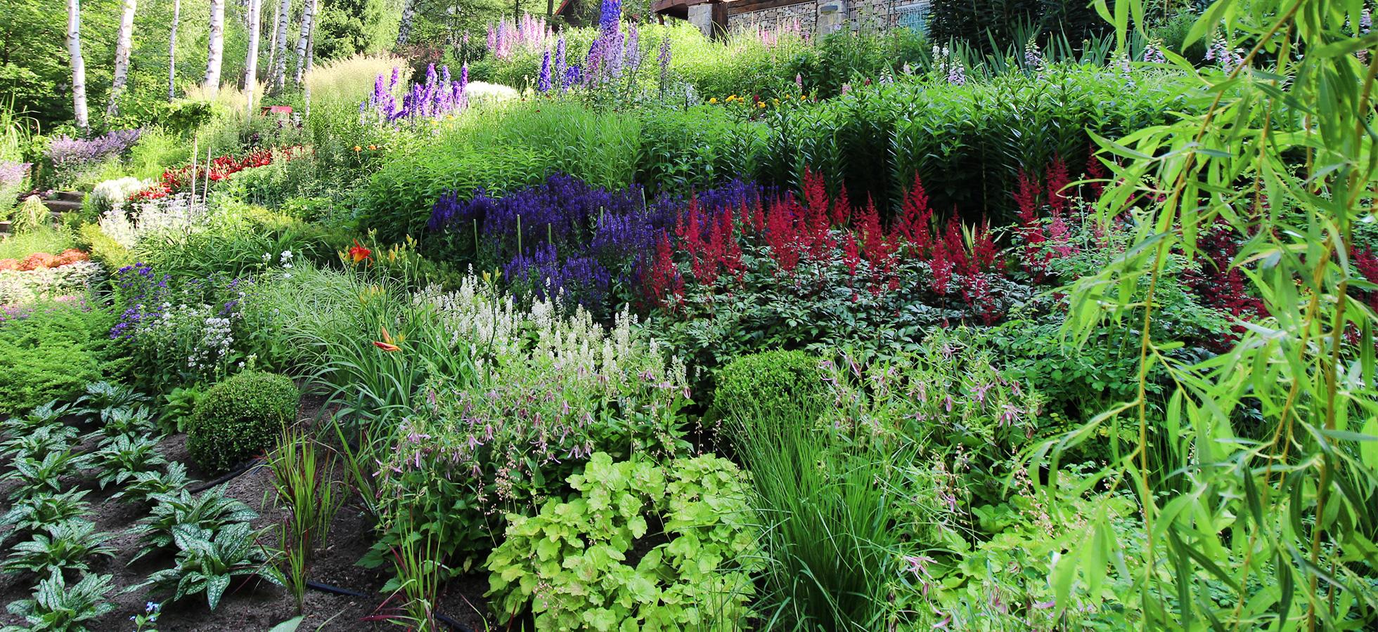 slide-1-doradzstwo-ogrodnicze-leczenie-zapobieganie-eko-opryski
